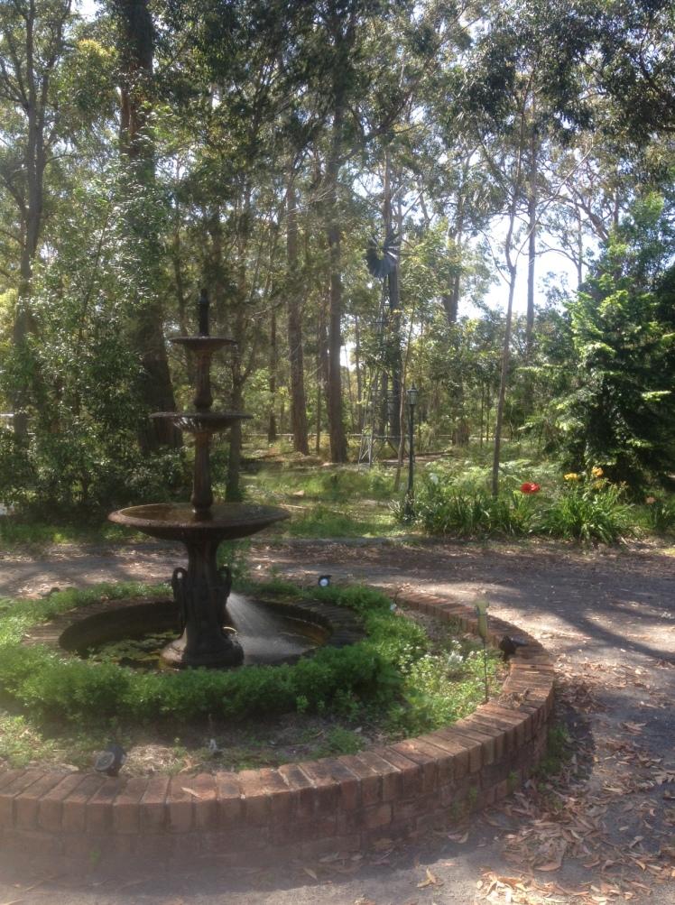 Garden IMG_2958
