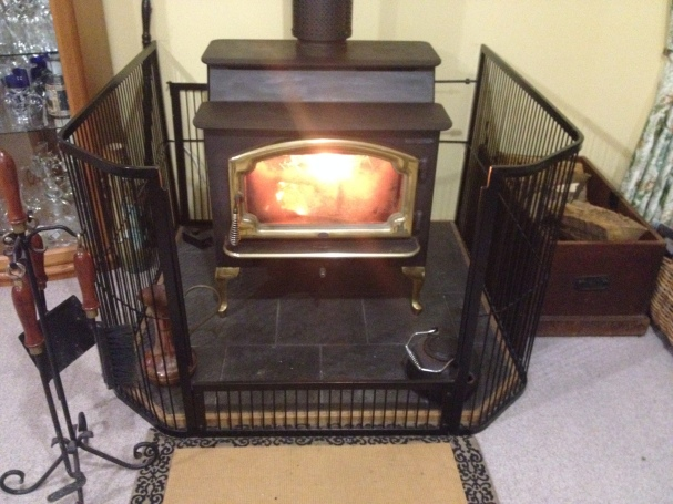 Shared Living Room Wood Fire heating
